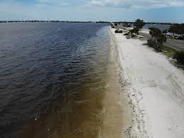 Why Is Florida Experiencing Its Most Toxic Algae Bloom In A