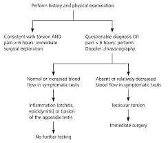 testicular torsion newborn. evaluation of acute scrotal pain testicular torsion newborn