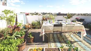 city roof tops come with garden layout and small roof garden design
