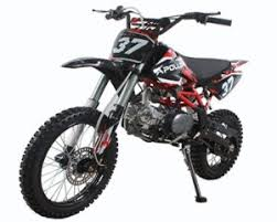 125cc dirt bike which one should you choose