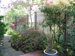 Innenarchitektur Sch Nes Hoher Sichtschutz Im Garten Die Besten