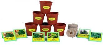chefs herb garden seed starter kit garden biodegradable standard quality durable