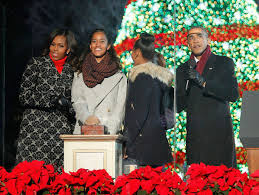 President Obama Christmas Tree Lighting Obama And The White House Christmas Tree Myth