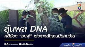 ลุ้นผล DNA คดีน้องชมพู่ - เร่งหาหลักฐานมัดคนร้าย | ข่าวช่อง 8 | #ข่าวเด่นช่อง8  9 มิ.ย. 63 - YouTube