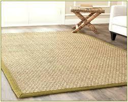 awesome ikea sisal rug or sisal area rugs 76 ikea sisal rug 8x10