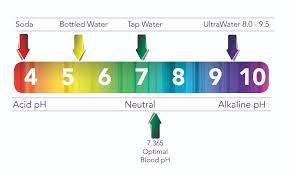Alkaline Ph Level Chart What Is Alkaline Al Diyar Water