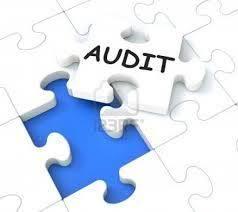 diploma in cooperative audit