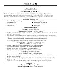 Summary Sample For Resume Roddyschrock Com