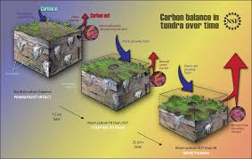 Resultado de imagen de el permafrost puede ser la gran bomba climática