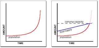 malthusian theory of population essay malthusian theory of population essay amazon com