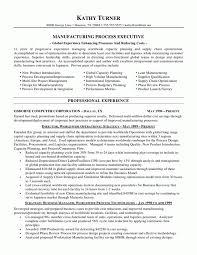Process Engineer Resume Examples Internationallawjournaloflondon