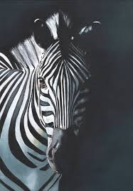 why be regular when you can be a zebra eds zebra painting print of
