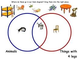 Sorting 2d Shapes Venn Diagram Ks1 Diagram Flower Sorting Activity Venn Shapes Using A Worksheet