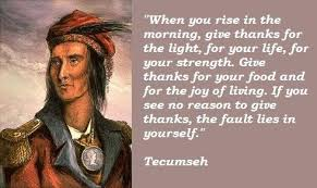 Tecumseh Quotes Enchanting Prayer Of Tecumseh And Me