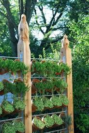 outdoor herb garden outdoor herb garden ideas august shoe holder herb garden small outdoor herb garden outdoor herb garden