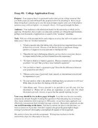 Nhs Essays Examples Resume Ideas