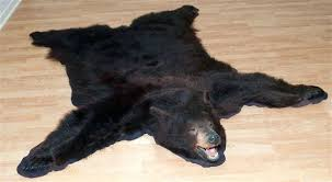 real bear skin rug bear skin rug attractive ideas for faux with 2 bear skin rug