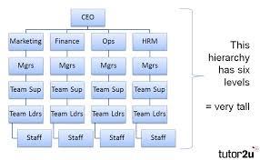 Hierarchy Business Tutor2u