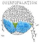 overpopulation problems essay