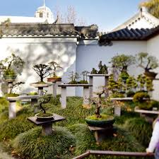 Small Picture Chinese Garden of Friendship