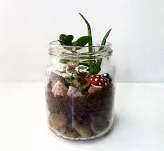 picture of diy mason jar garden