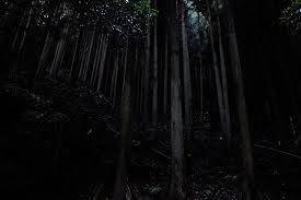 京都嵐山清滝川で川遊び20130811 Photo Blog