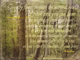 Pin By Pat Mccain On A Southerner At Heart Blog Serenity Quotes