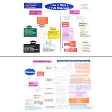 Diagnosis Chart Amazon Com How To Make A Tcvm Diagnosis Chart Health