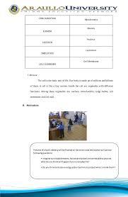 Cell Biology Worksheets High School | Homeshealth.info