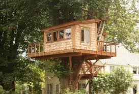 basic tree house pictures. How To Build A Simple Treehouse Without Tree Basic House Pictures