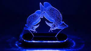 ĐÁNH GIÁ] Đèn Led 3D Mô Hình Cặp Cá Rồng Nhỏ, Giá rẻ 180,000đ! Xem đánh  giá! - Cửa Hàng Giá Rẻ