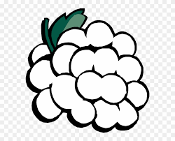 black and white grapes clipart. Brilliant Grapes Grapes Black And White Clipart Kid  Clip Art Intended A