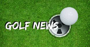 Image result for golf heart