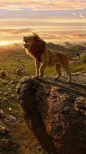 Lion Wallpaper Iphone (#3255591) - HD ...