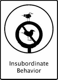 Image result for insubordinate behavior