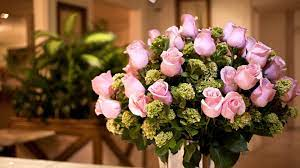 Pink-Roses-Flowers-Pictures-HD ...