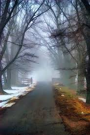 winter mist could be a road down any new england town fantastic
