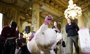 White House Reveals Names Of Turkeys To Be Pardoned By Trump