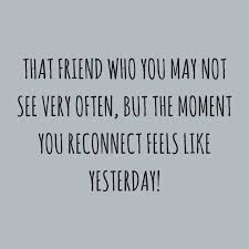 Quotes About Friendships And Distance Adorable 48 Best Friendship Pictures Quotes Quotes And Humor
