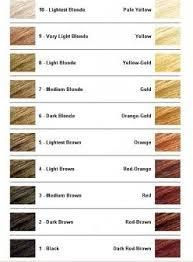 Hair Bleach Shade Chart Bedowntowndaytona Com