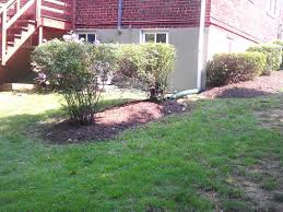 Next Level Landscaping Home Design Landscaping Services Sod Grass Montclair Woodbridge