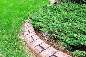 Image of: Beautiful Concrete Landscape Curbing