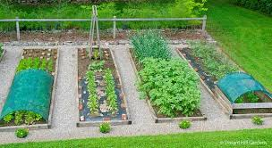 Small Picture 28 Vegetable Beds Raised Bed Vegetable GardenHow To Build