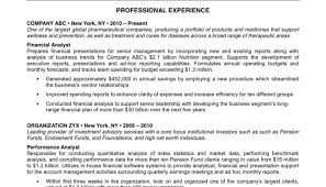 Really Good Resume Templates Professional Resume For Accountant