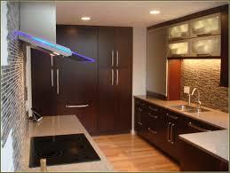 Kitchen Cabinet Door Fronts Replacing Kitchen Cabinet Doors Fronts Home Design Ideas