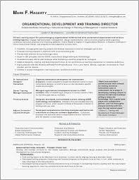 Basic Resumes Examples Inspiration Advantage Resumes Examples Where Can I A Resume Joselinohouse Best
