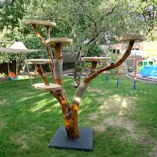 outdoor cat tree house ideas