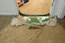 reno carpet cleaning and repair