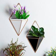 geometric plant flower pot indoor