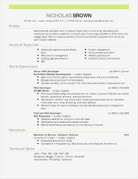 92 Web Developer Resume Template Senior Web Developer Resume